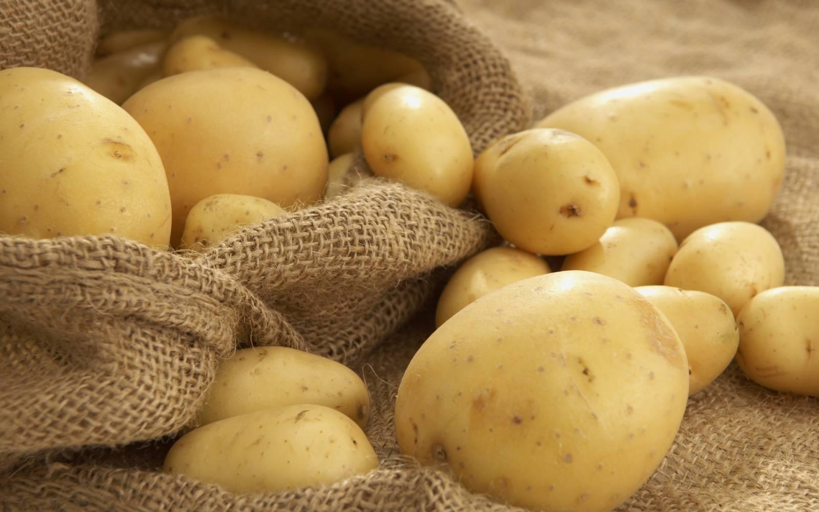 можно ли есть картошку на диете