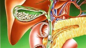 Лекарства при болезни печени и желчного пузыря